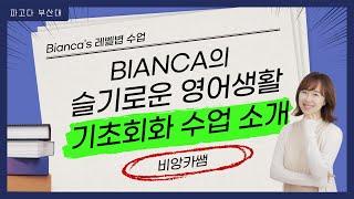 부산대파고다_기초회화 Bianca리 레벨별 특징