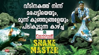 Wow! Vava Suresh catches a Palm Civet and three babies | Snakemaster | Latest Episode