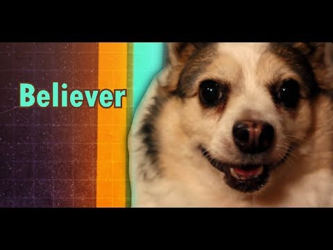 Imagine Doggos - Believer