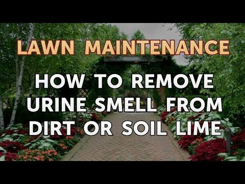 How To Remove Urine Smell From Dirt Or Soil Lime