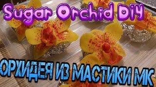 Орхидея из мастики//мастер класс/Цветы из мастики пошагово(Мастер класс по изготовлению цветов из мастики.Как сделать орхидею из мастики.Орхидея из мастики пошагово...., 2017-01-22T09:59:32.000Z)