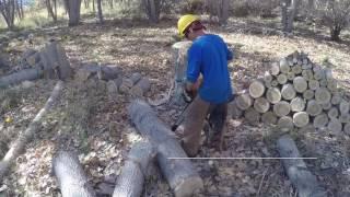 Video Bucking big Logs download MP3, 3GP, MP4, WEBM, AVI, FLV Juli 2018