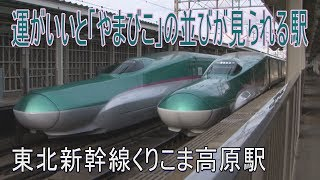 【駅に行って来た】東北新幹線くりこま高原駅は320km/hの通過が見られる駅