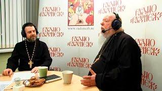Радио «Радонеж». Протоиерей Димитрий Смирнов. Видеозапись прямого эфира от 2017.04.01