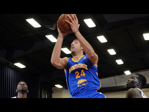 James Michael McAdoo NBA D-League Highlights - November 2014