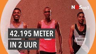 Kun je een marathon in minder dan twee uur lopen? | NOS op 3