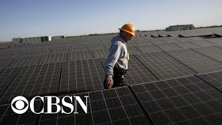 Renewable energy hits record-high growth