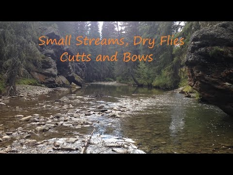 Fly Fishing Small Streams: Dry Flies, Cutthroats and Rainbows