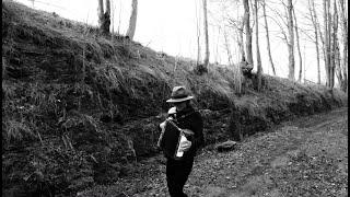 Wayfaring Stranger - Linda Trillhaase