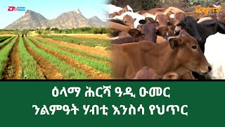 ERi-TV - መኣዝን ልምዓት፡ ዕላማ ሕርሻ ዓዲ ዑመር | The role and purpose of Adi Umer agricultural project