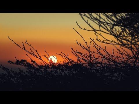 Sunset Manipulation effect Photoshop Tutorial thumbnail