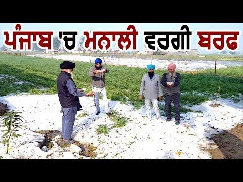 Punjab की इस City में हुई Manali जैसी Snowfall