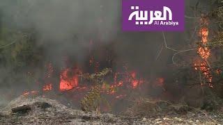 حرائق واسعة تأتي على مناطق شاسعة من لبنان