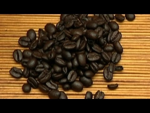 The Story of Coffee: The History of Coffee & How to Make the Perfect Cup (Trailer)