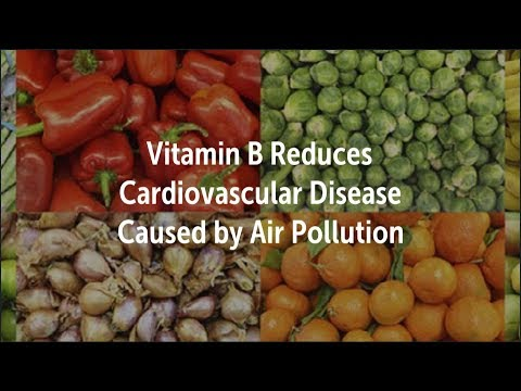 Vitamin B Reduces Cardiovascular Disease Caused by Air Pollution