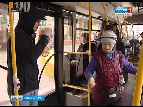 Калининград испытывает дефицит кондукторов и опытных водителей