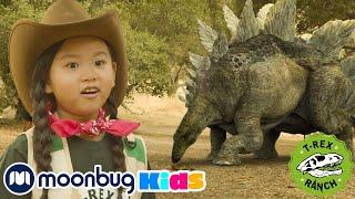Half Past Roar | Moonbug Kids TV Shows - Full Episodes | Cartoons For Kids