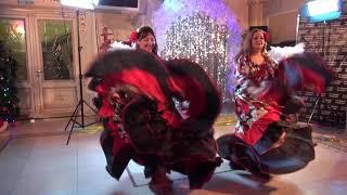 Шоу     балет     «Terradance»  -   (руководитель   Елена Безбогина) -  Цыганочка