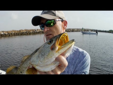 Big Fish Day on the MRGO: Trout and Redfish with Gold Spoons and Live Mullet (ft. M Hood Fishing)