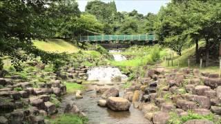 ある道の駅の風景 シリーズ1 【Premium Slide】 道の駅 月夜野矢瀬親水公園