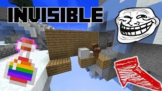 Invisible Potion Troll !! ( SkyWars )