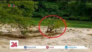 Cứu người đàn ông mắc kẹt trên cây giữa dòng nước lũ | VTV24
