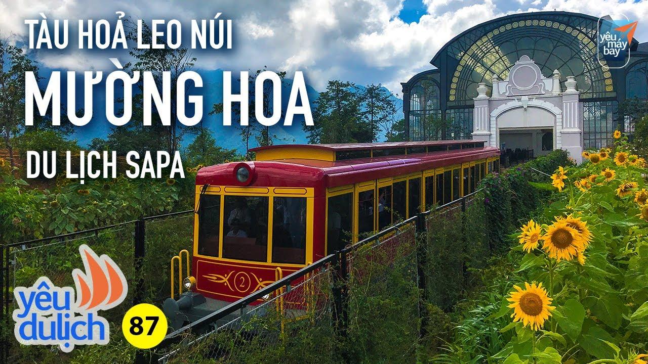 YDL #87: Đi tàu hoả leo núi Mường Hoa ngắm cảnh Sa Pa đẹp lạ | Yêu Máy Bay