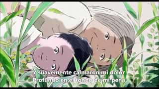He visto este tema subtitulado en varios idiomas, más no en Español...