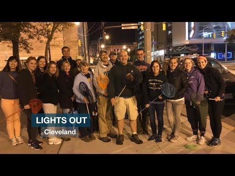 """""""Lights Out Cleveland"""" Hopes To Save Migratory Birds With The Flip Of A Light Switch"""
