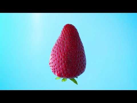 Килограмм здоровья. Сколько овощей и фруктов надо есть в