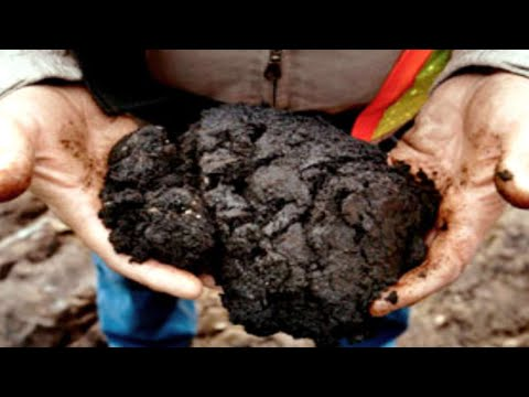 4.5 What are Oil Sands vs. Oil Shales? Petroleum Geology