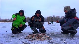 Рыбалка зимой от Михалыча. Ловля окуня со льда на Днепре(Супер уловистая удочка на карпа и карася. Боковые кивки, мормышки. Заказываем здесь http://mikhalych.com/ Сумасшедши..., 2014-12-25T12:37:09.000Z)