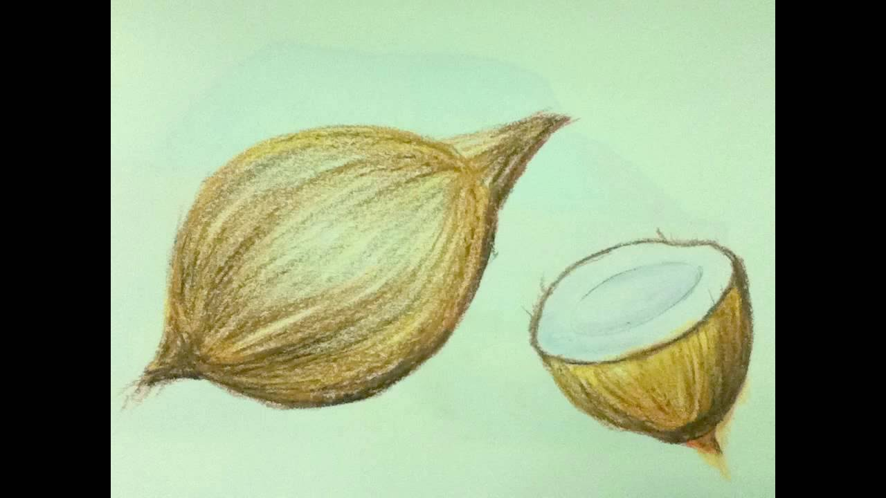 Still Life Drawing And Shading In Simple Steps Youtube