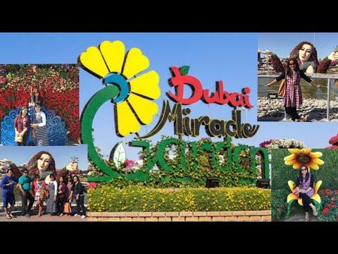 Captivating the Beauty of Dubai Miracle Garden