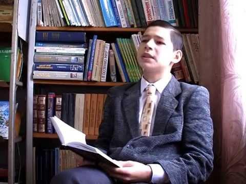 Изображение предпросмотра прочтения – ВалерийСаляхов читает произведение «Одиночество» И.А.Бунина