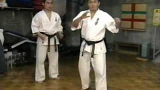 成嶋竜 一撃の竜(ドラゴン)極真空手 シュルトの得意技 Narushima Ryu K...