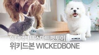 [HUGGLE] 위키드본 WICKEDBONE 반려동물 …