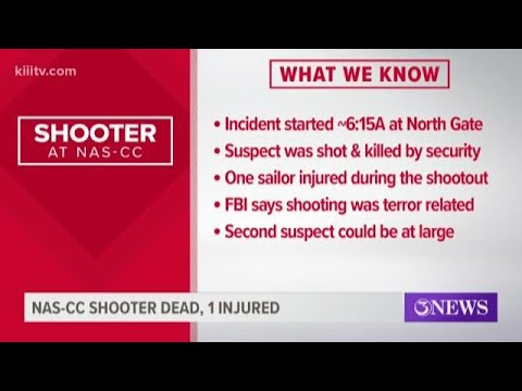 Shooting at air station in Corpus Christi, Texas, was 'terrorism ...