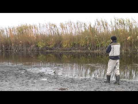 видео рыбалка на уокер
