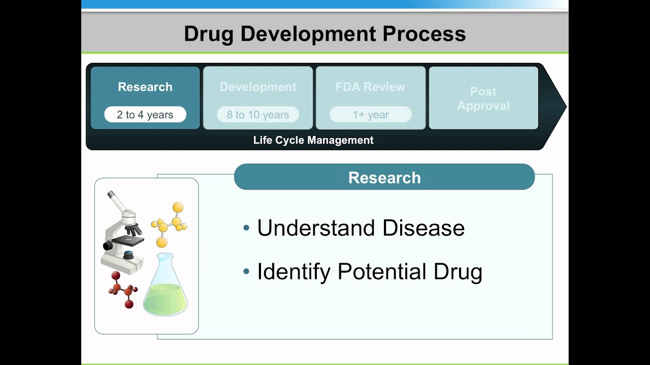explaining the pharmaceutical approval process using powerpoint, Powerpoint templates