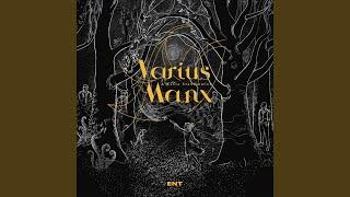 Varius Manx Kot Bez Ogona Muzykateledyskiinfo Wyszukiwarka