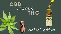 DER UNTERSCHIED: CBD vs. THC » ERKLÄRUNG