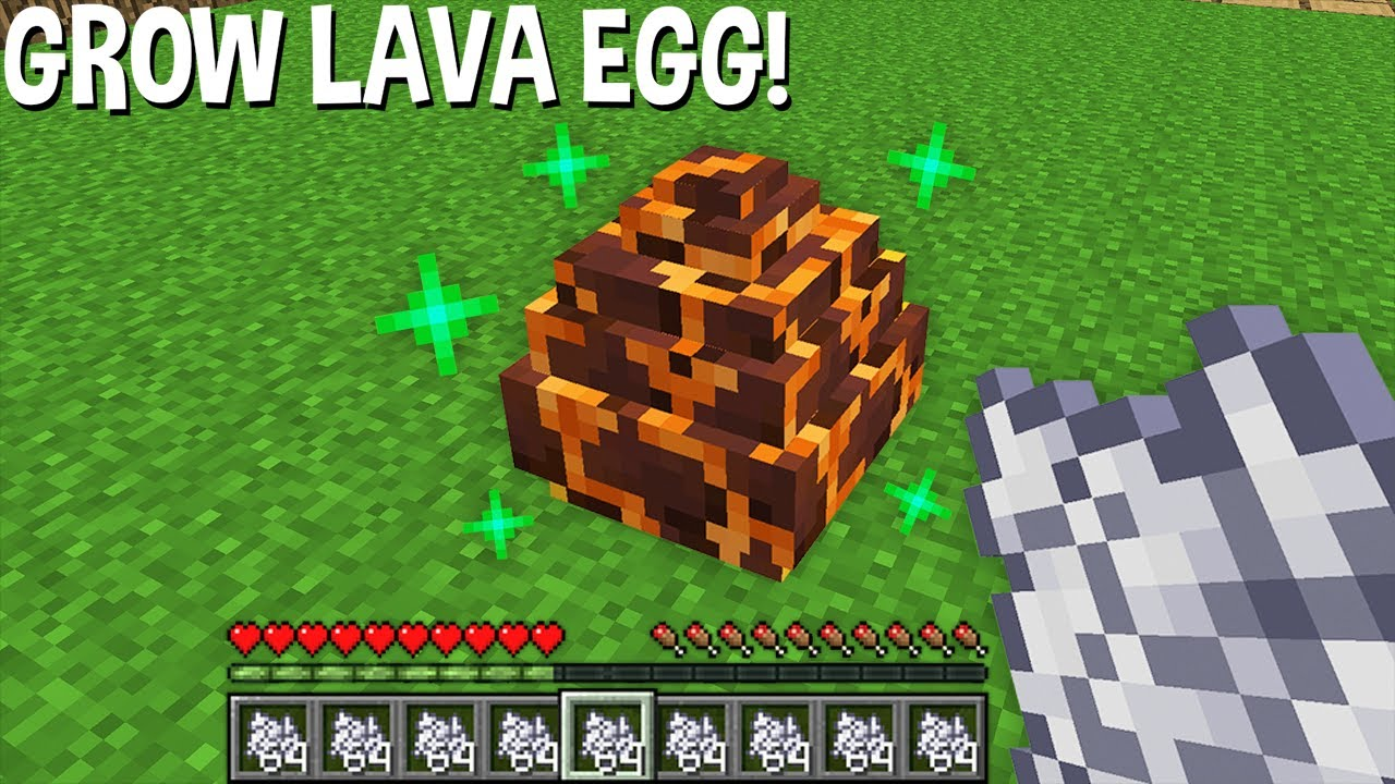 WHAT HAPPENS if USE BONE MEAL on LAVA DRAGON EGG in Minecraft ? NEW DRAGON ?