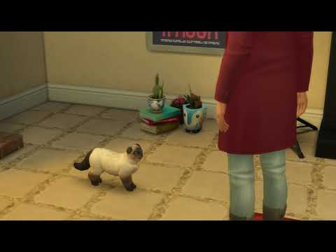 the sims4 singing cat