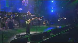 DAVID GILMOUR - COMING BACK TO LIFE - FENDER 50th