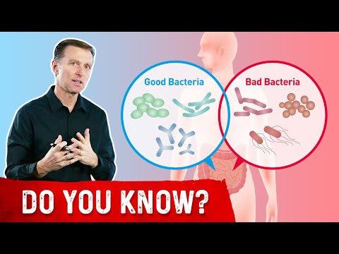 What Makes Good Bacteria Turn Bad