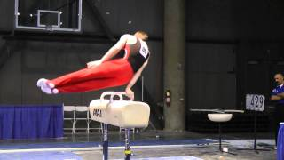 James Jindra - Pommel Horse - 2011 Winter Cup Challenge Day 1