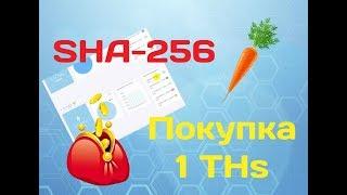 №8 Покупка мощности SHA 256 для майнинга на HashFlare (+1THs)