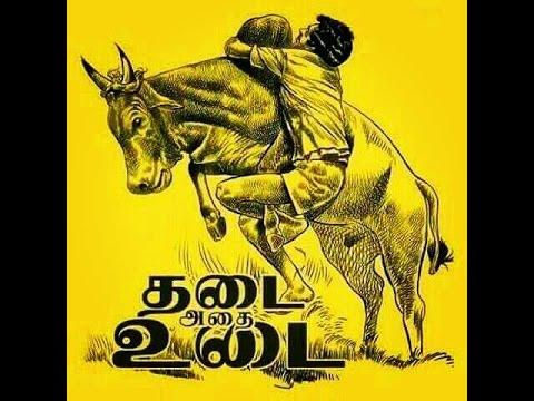Kombu Vacha Singamda | G.V. Prakash Kumar | Jallikattu Song