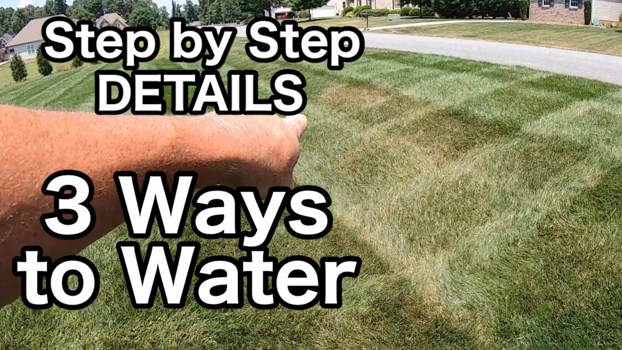 3 Ways To Water Your lawn (Heat Stress/Normal/Grass Seed)